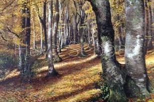 The New Forest - Landscape Painting - Hava Sebbag Fine Art.jpg